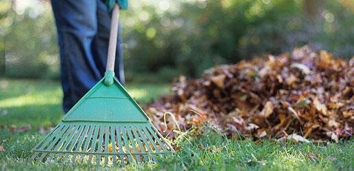 AUJOURD'HUI – Collecte de résidus verts et de feuilles d'automne