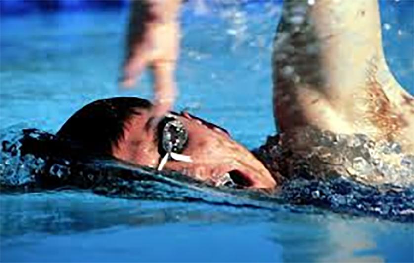 Calendrier de natation pour adultes