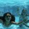 Début des inscriptions aux cours de natation le 21 novembre