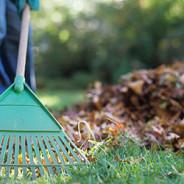 Collectes de résidus verts et de feuilles d'automne VENDREDI PROCHAIN