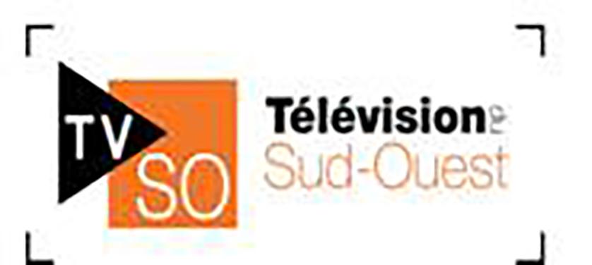 Offre d'emploi d'été à la Télévision du Sud-Ouest