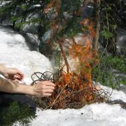 NatuRando : Survie en forêt