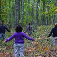 23 OCTOBRE – SHINRIN YOKU – Séance d'immersion en forêt avec un guide certifié