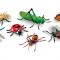 SEMAINE DE LA RELÂCHE: Atelier interactif sur les insectes et création d'une araignée en 3D