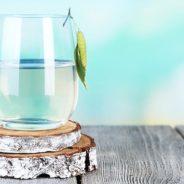 CONFÉRENCE: Cures printanières et allergies