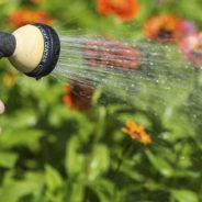 OFFRE D'EMPLOI: Aide-jardinier (arrosage)