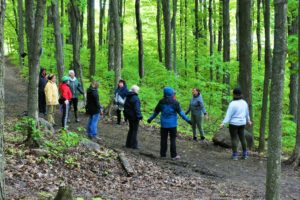 **REPORTÉ AU 29 JUIN** SHINRIN YOKU – Séance d'immersion en forêt avec un guide certifié – MARCHE THÉMATIQUE L'énergie des arbres**