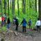 SHINRIN YOKU – Séance d'immersion en forêt avec un guide certifié – 5 JUIN