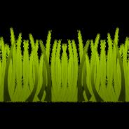 Travaux de coupe d'herbe près des bordures de béton et des trottoirs