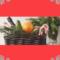 Paniers de Noël