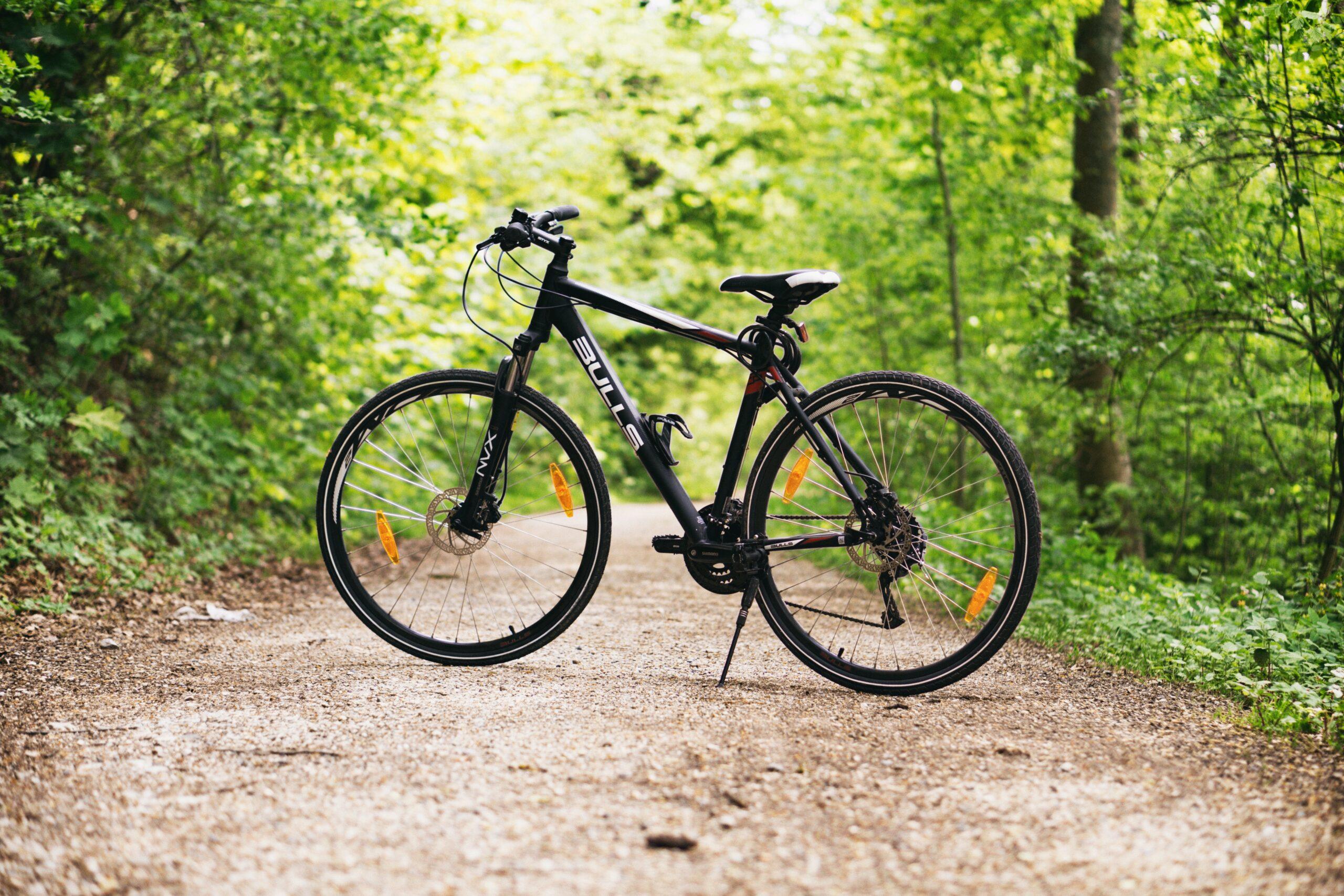 GRATUIT! Activité de burinage de vélos