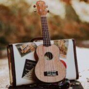 LE 5 AOÛT: Cours d'initiation à la musique – UKULÉLÉ!