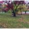 Visitez notre parc De Léry-MacDonald !